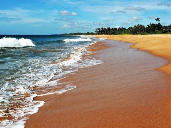 На Шри-Ланке будут возвращать деньги туристам!